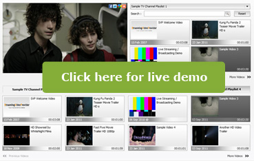 Multiple Playlists Video Player